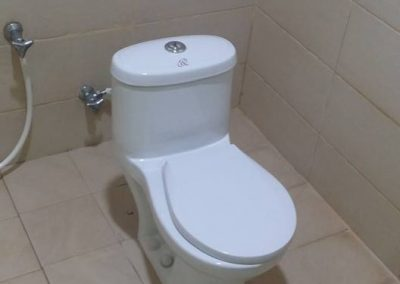 Tot-size toilets for training